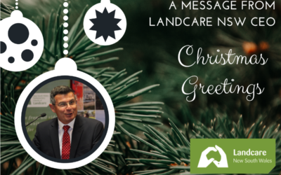 2019 Christmas Greetings – a message from the CEO
